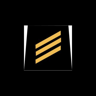 Gradabzeichen F1 Mit Rückseitigem Klett neue Gradierung