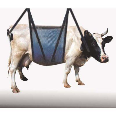 Engin Pour Maintenir Et Soulever Les Vaches